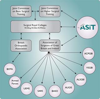 ASiT Role