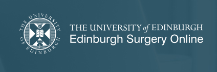 The ASiT-ESO Bursary for Edinburgh distance learning ChM